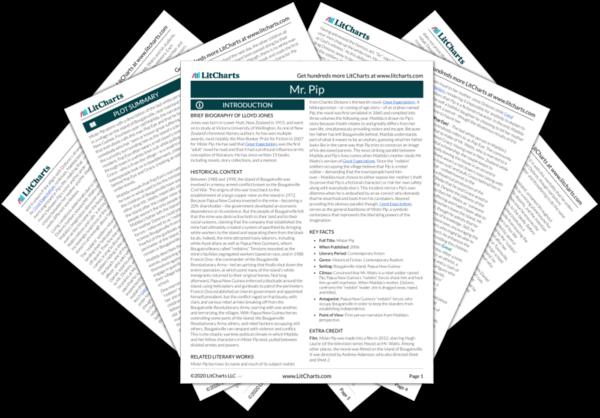 Mr pip.pdf.medium